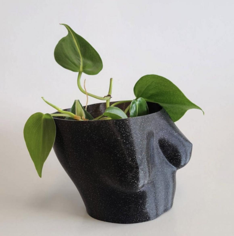 Boob Plant Pot